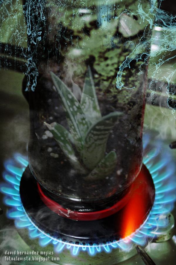 Fuego a la tierra, al aire, agua: #Reto 4 Elementos