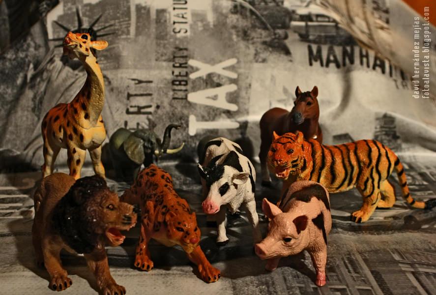 Animales a la huelga: #retoAnimales