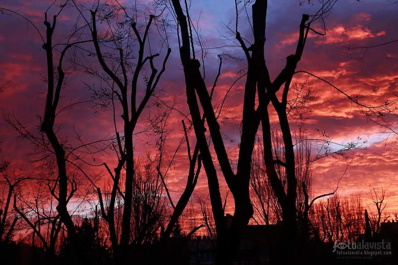 Amanecer de febrero - Fotografía