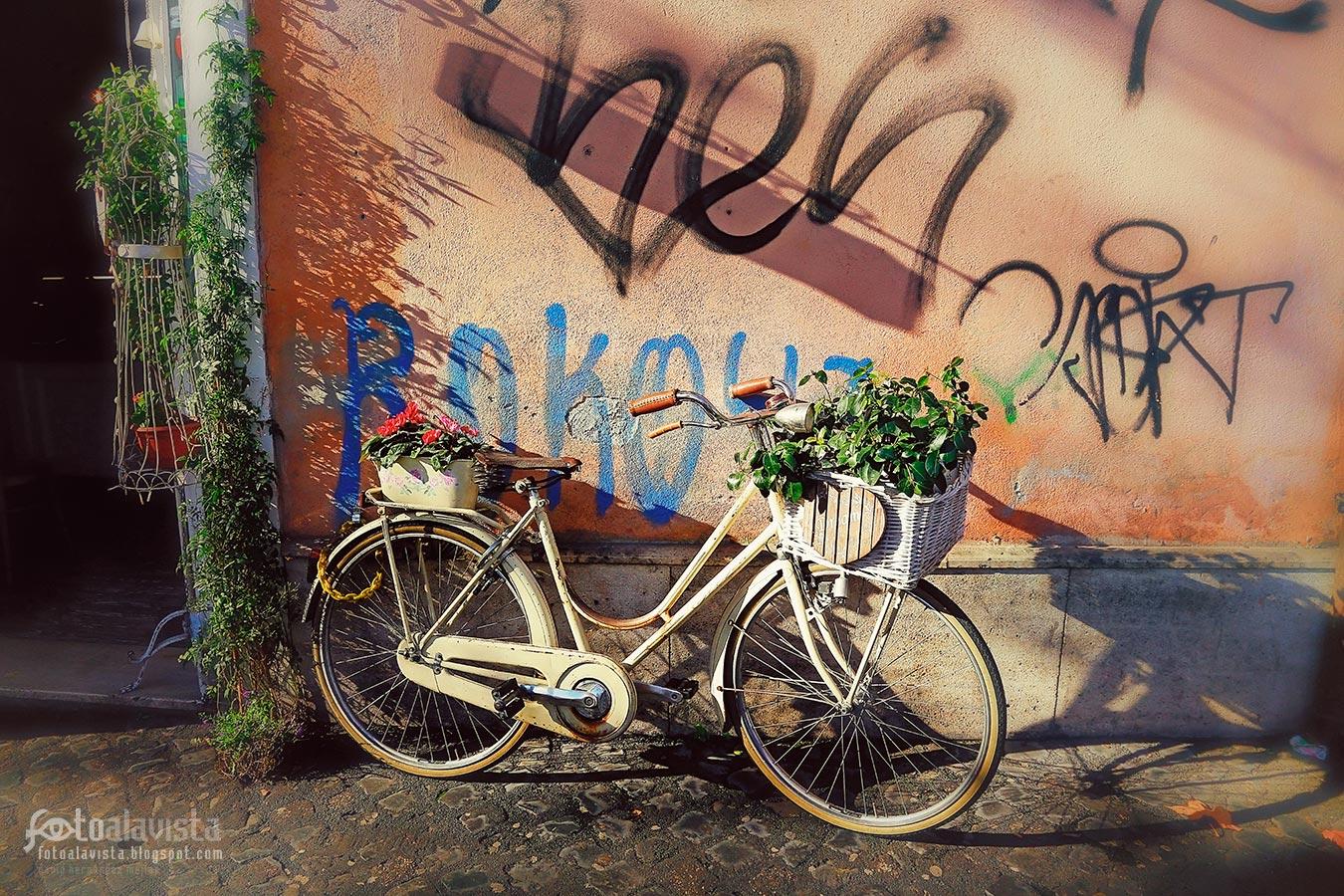 Una bicicleta con arte - Fotografía