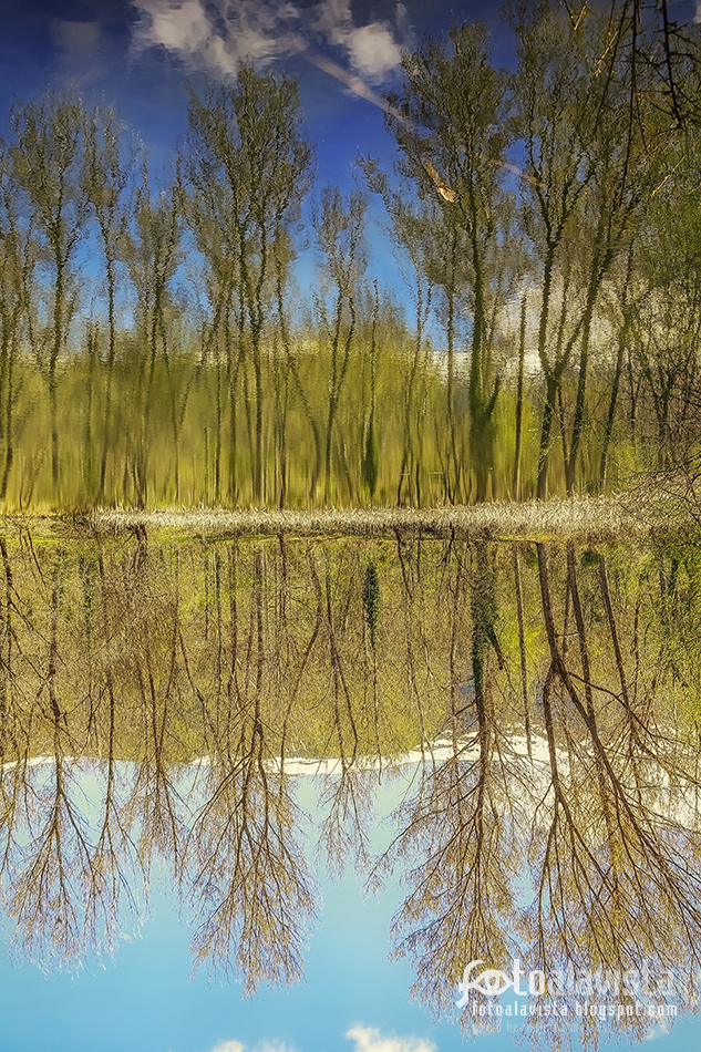 Realidad o reflejo - Fotografía artística