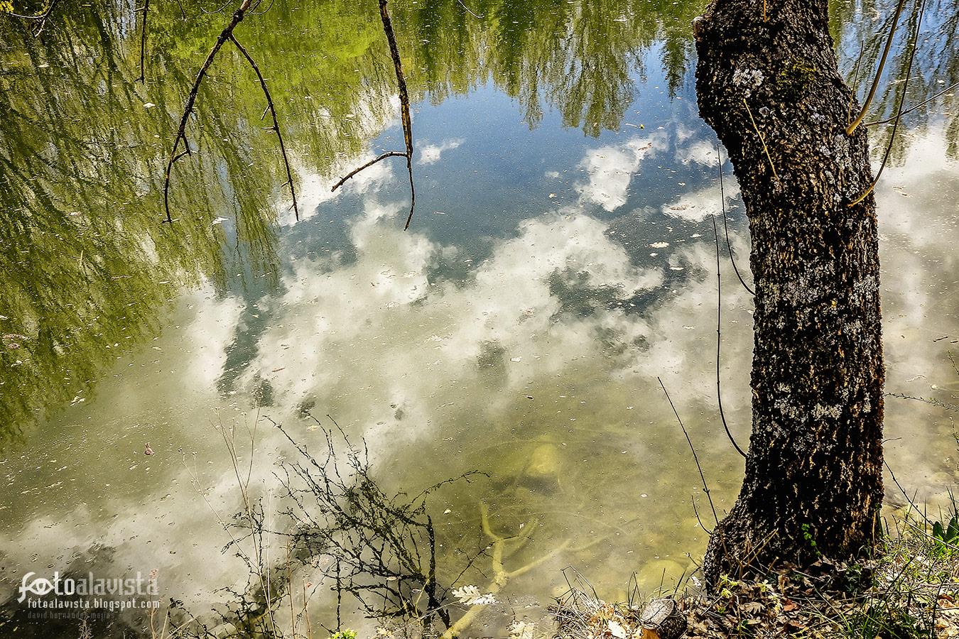 El lago de la imaginación