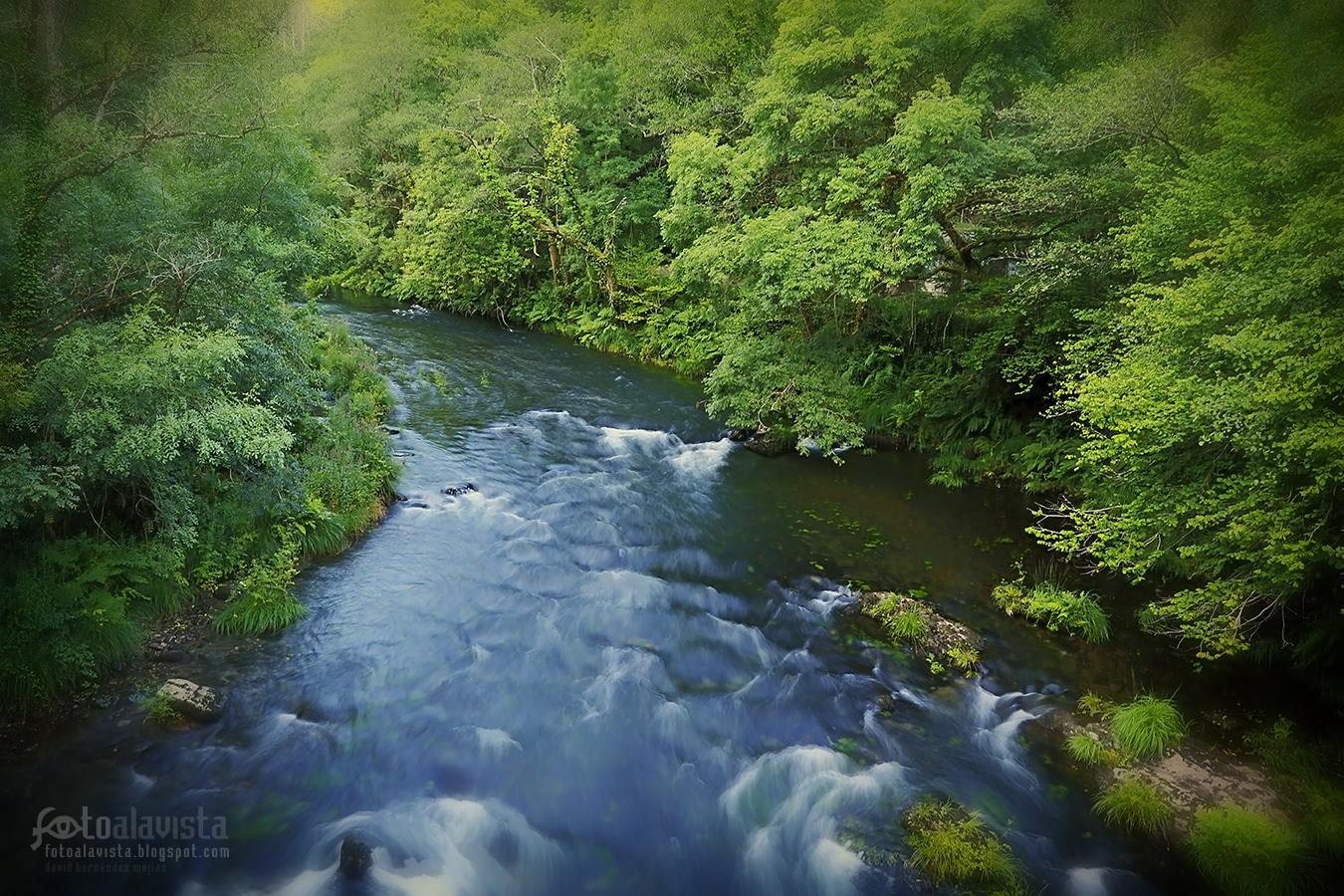 El río que surca oscuro - Fotografía