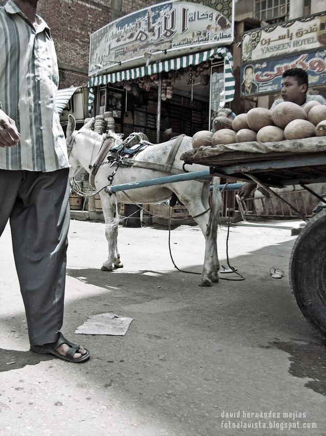 En la calle del bazar