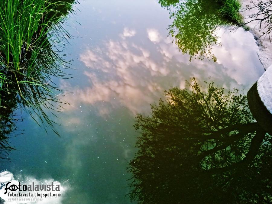 Entre el cielo y el suelo
