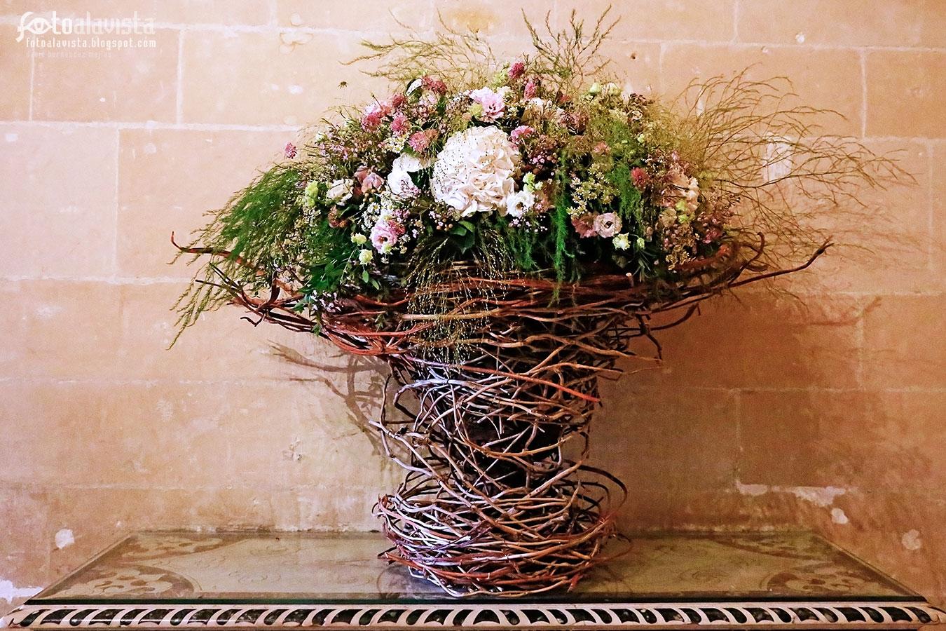 Florero natural de ramas - Fotografía
