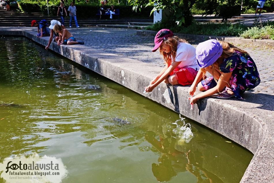 Jugando en el lago con los peces