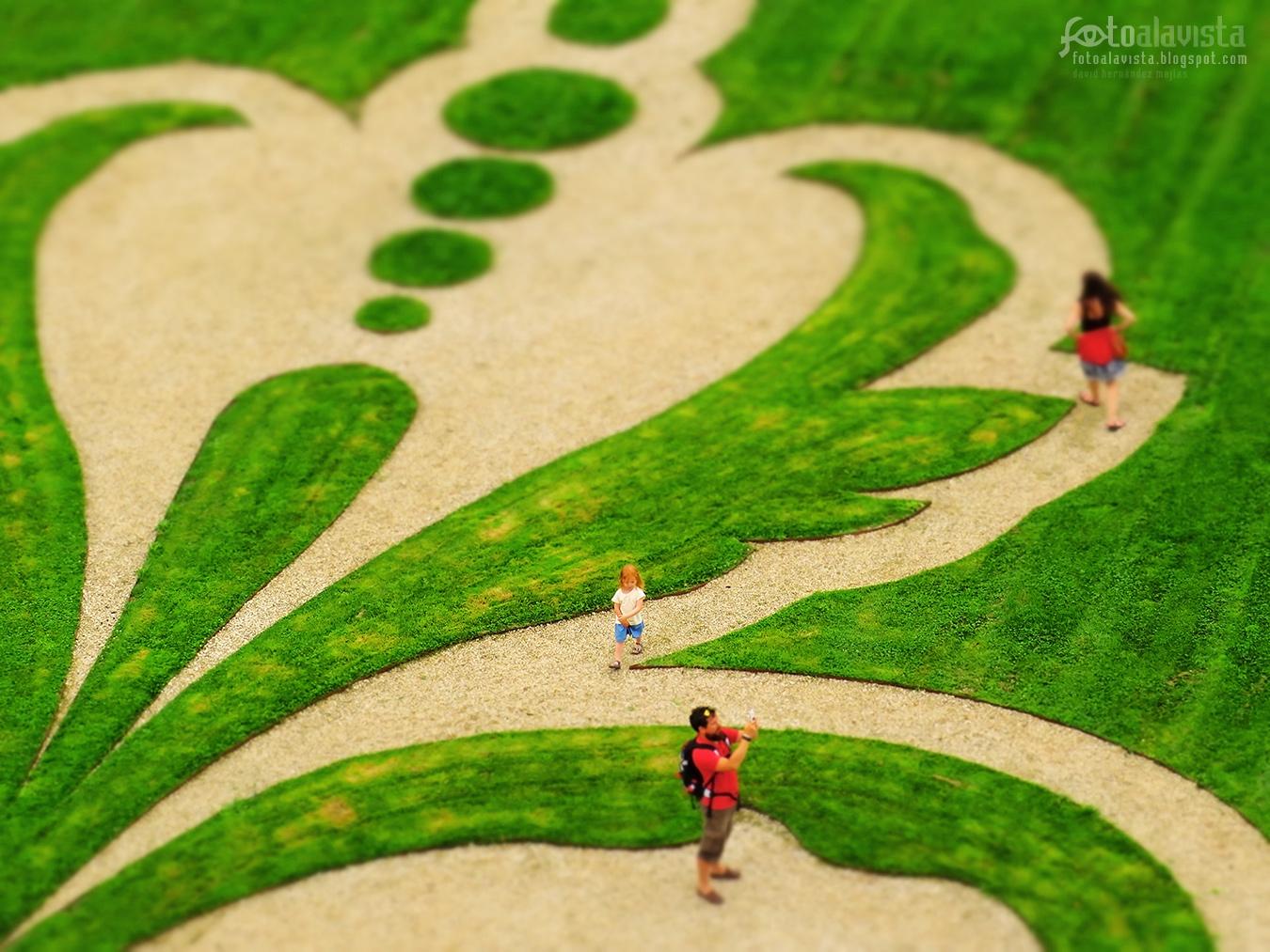 Como caminos de vida - Fotografía