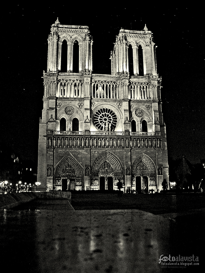 Lagrimas por Notre Dame - Fotografía artística