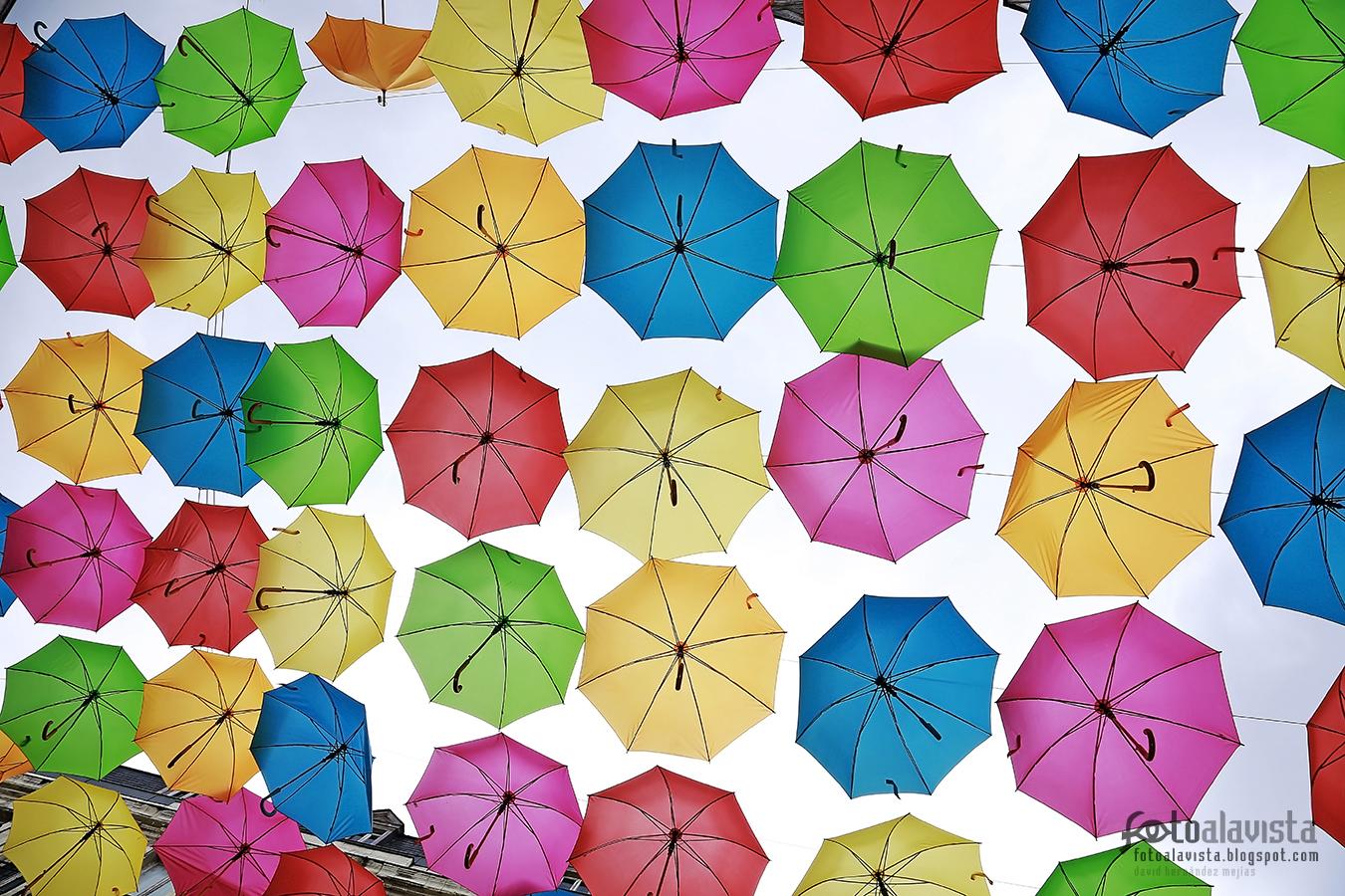 Para cuando llueva... o salga el sol - Fotografía