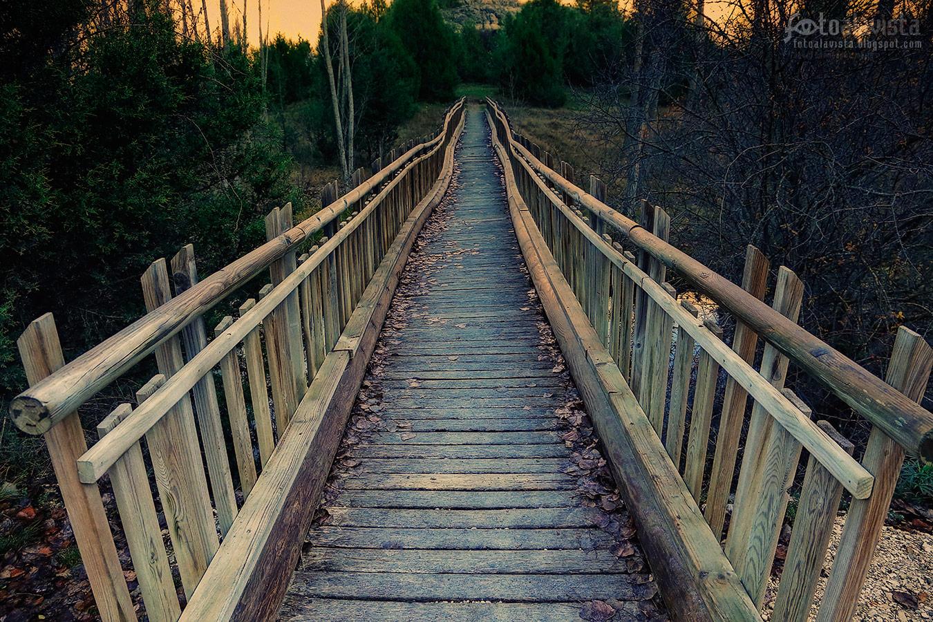 El puente de madera que nos transporta - Fotografía