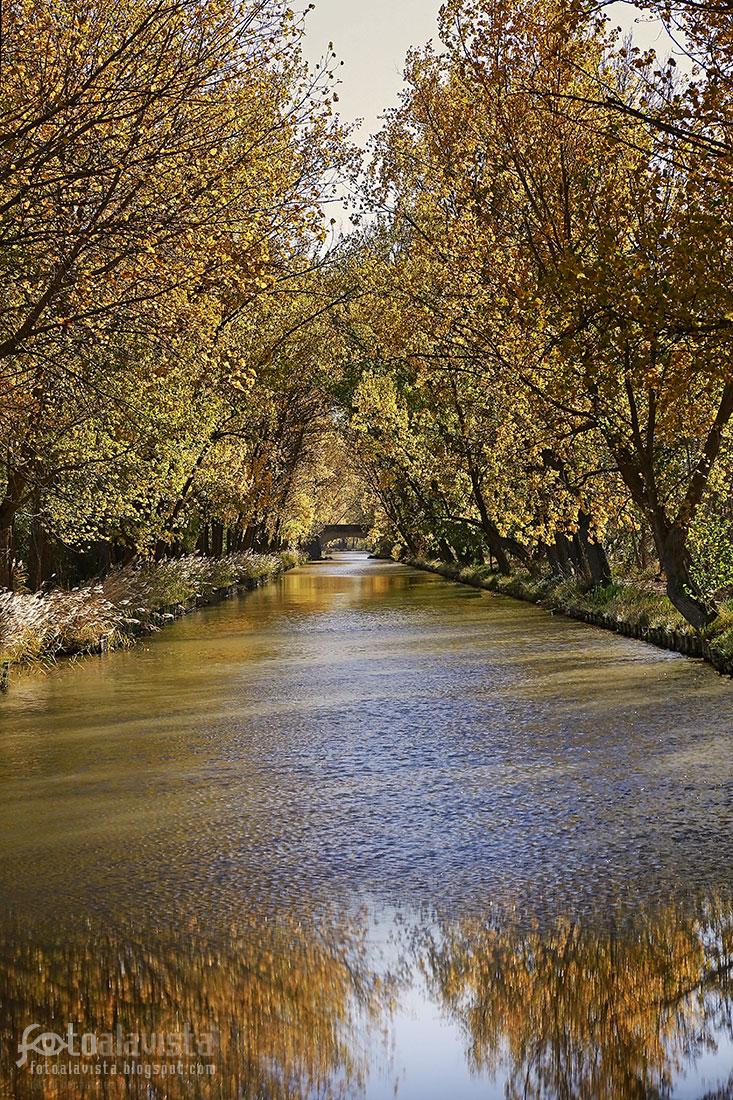 Canal otoñal - Fotografía